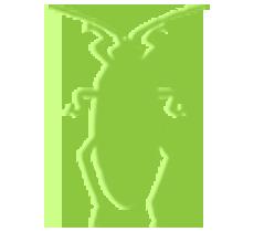 Green Roach